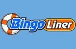 Casino Review Bingo Liner